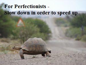 tortoise - slow down
